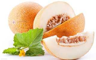 Калорийность продуктов и готовых блюд для похудения