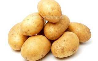 Как сбросить вес на картофельной диете за короткий срок