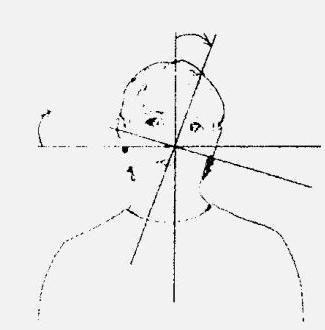 Упражнение Локатор Белояр